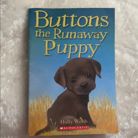 Scholastic buttons the runaway Puppy book